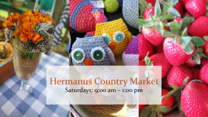 Hermanus Country Market @ Hermanus Cricket Club