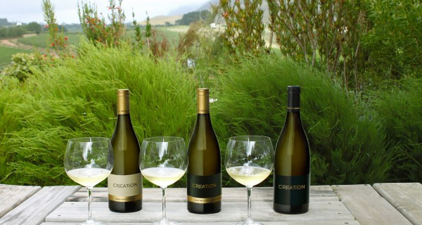 Three Chardonnays on a table outdoors