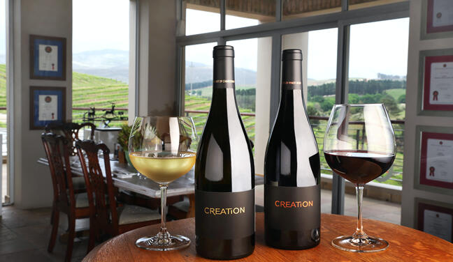 Bottles in Tasting Room: White and Red